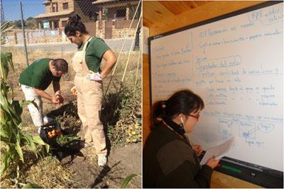 Programas de inserci n asociaci n talism n for Auxiliar jardineria